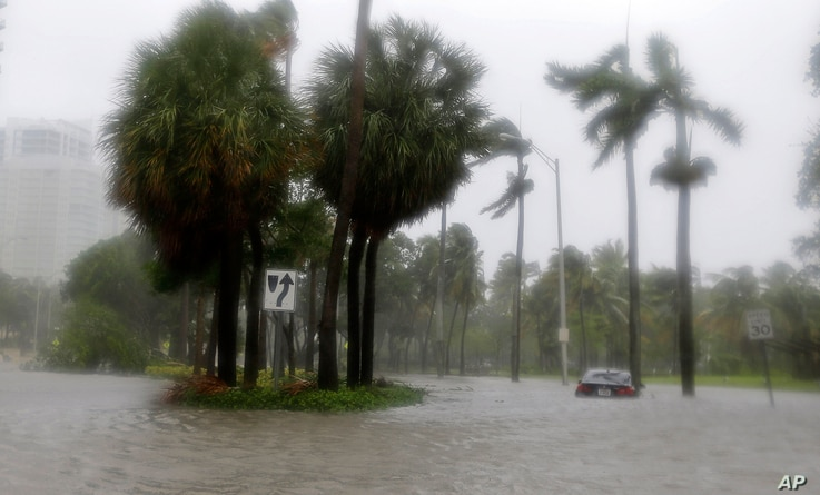 Heavy rains flood the streets in the Coconut Grove area in Miami, Sept. 10, 2017, during Hurricane Irma.