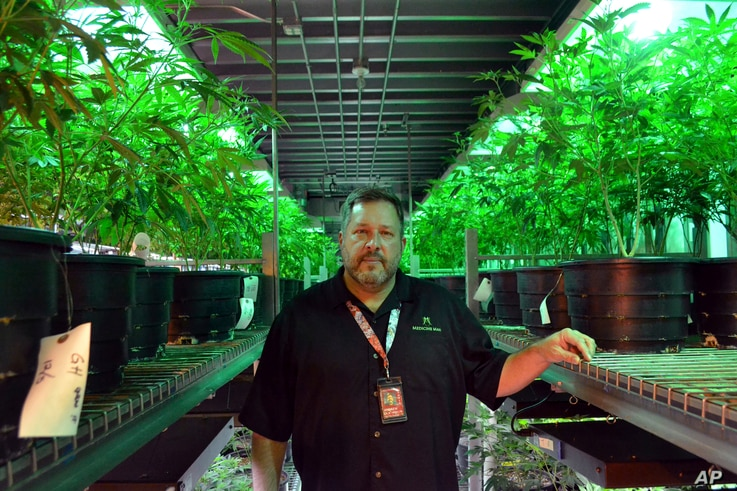 Andy Williams, founder and CEO of Medicine Man Denver in Denver, Jan. 4, 2018. Colorado's top federal prosecutor said his office won't alter its approach to enforcing marijuana crimes after U.S. Attorney General Jeff Sessions withdrew a policy Thursd...