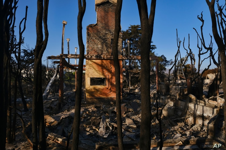 Burned trees surround a destroyed home leaving only the fireplace in Point Dume in Malibu, California, Nov. 11, 2018.
