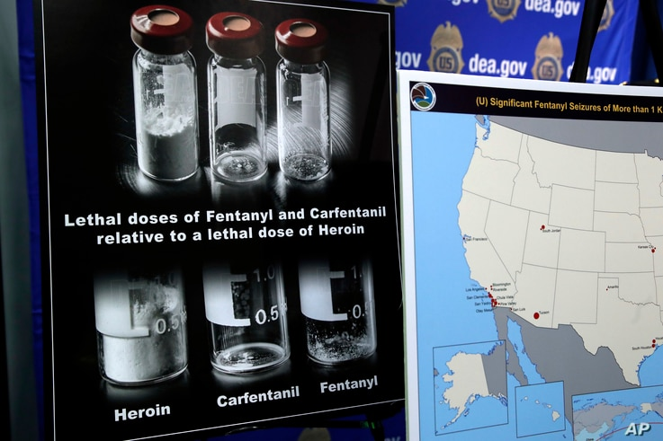 FILE - Posters comparing lethal amounts of heroin, fentanyl, and carfentanil, are on display during a news conference at DEA Headquarters in Arlington Va., June 6, 2017.