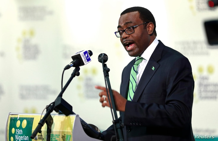Nigeria's Minister of Agriculture Akinwunmi Adesina presents a keynote address during the opening of the 19th Nigerian Economic Summit Group (NESG) meeting in Abuja, Sept. 3, 2013.