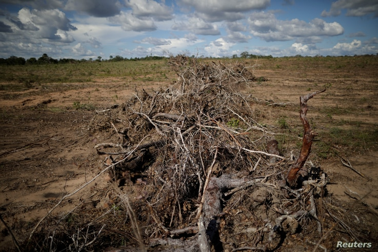 FILE - Branches and roots are piled on a farm after deforestation in Palmeirante, Brazil, Feb. 16, 2018.