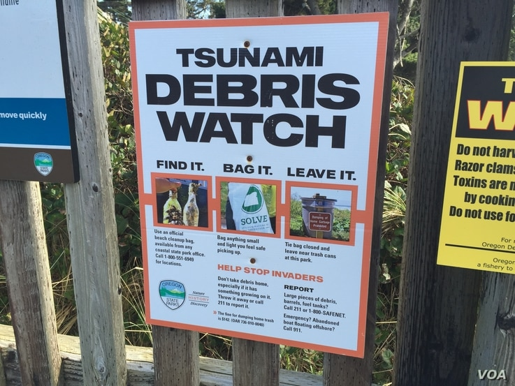 Signs at Oregon beach entrances advise beachcombers to be on lookout for tsunami debris. (T. Banse/VOA)
