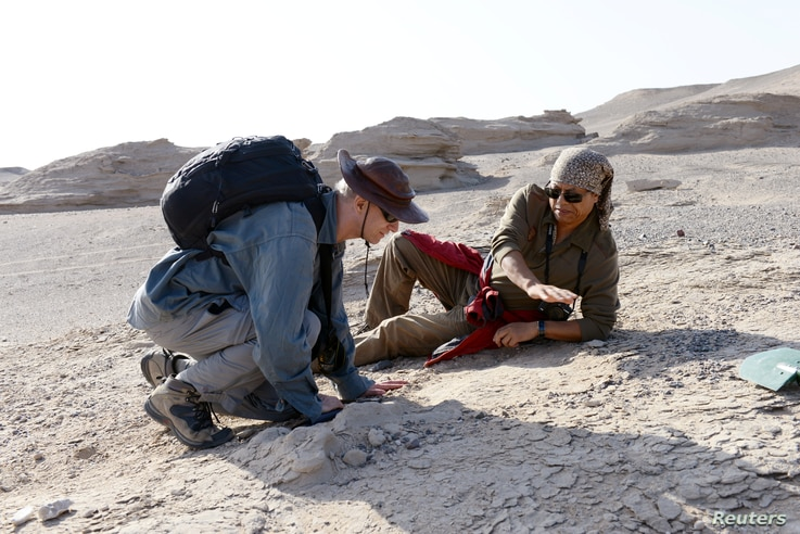 Paleontologists Xiaolin Wang and Alexander Kellner in the field, collecting new specimens in this Nov. 1, 2016, photo in Xinjiang Uygur Autonomous Region in northwestern China, provided Nov. 30, 2017.