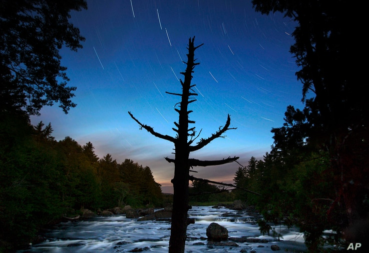In this Wednesday, Aug. 9, 2017 photo, a dead spruce tree stands on the shore of the East Branch of the Penobscot River in this time exposure in the Katahdin Woods and Waters National Monument near Patten, Maine.