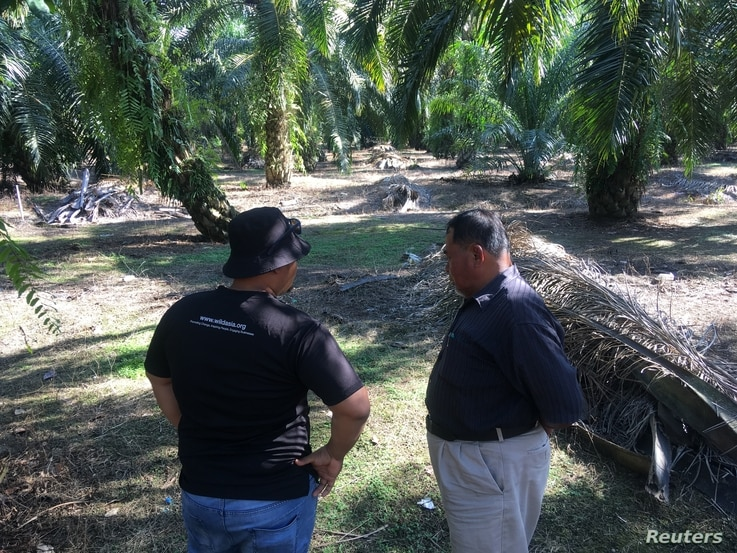 A palm oil smallholder (right) and a Wild Asia consultant discuss sustainable farming ideas on a plantation near Johor, Malaysia, March 22, 2018.