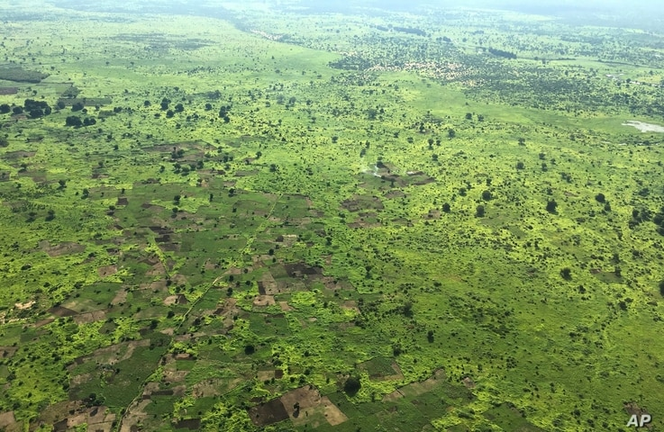 In this photo taken July 13, 2017, scattered trees dot the once densely forested land, seen from an airplane, in South Sudan.