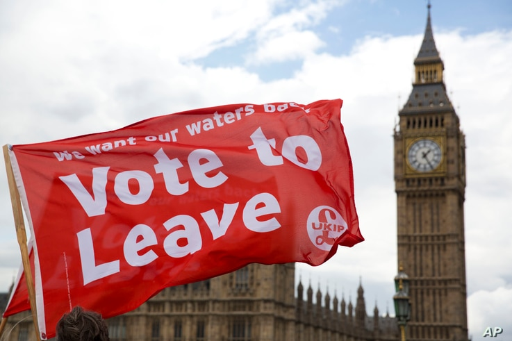 'Leave' supporters hold flags as they stand on Westminster Bridge during an EU referendum campaign stunt in which a flotilla of boats supporting 'Leave' sailed up the River Thames outside the Houses of Parliament in London, June 15, 2016.