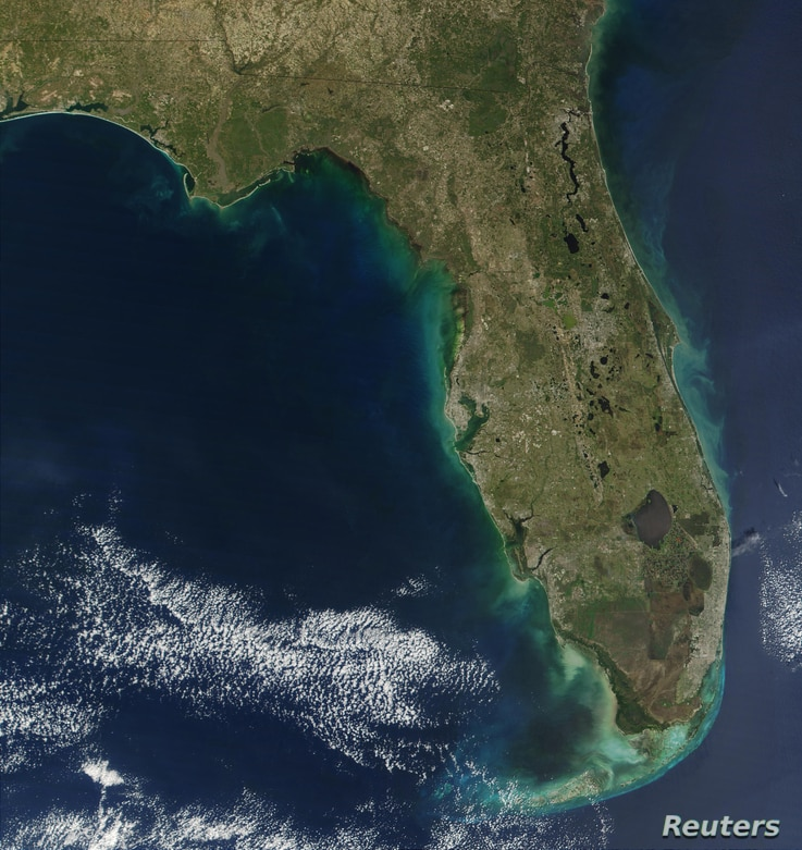 A major red tide bloom extends more than 100 miles along Florida's Gulf coastline and reaches more than 30 miles off shore in this handout NASA true-color image acquired Dec. 22, 2001, by the Moderate-resolution Imaging Spectroradiometer (MODIS), fly...