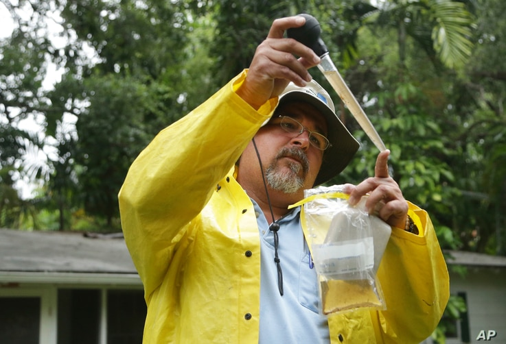 Robert Muxo of the Miami-Dade County Mosquito Control department, takes a sample of water that was standing in a potted plant in Miami, June 21, 2016. The department was responding to complaints about mosquitoes by a neighborhood resident.