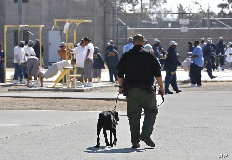 FILE - Inmates are seen exercising in the main yard at California State Prison in Vacaville, California, May 20, 2015.