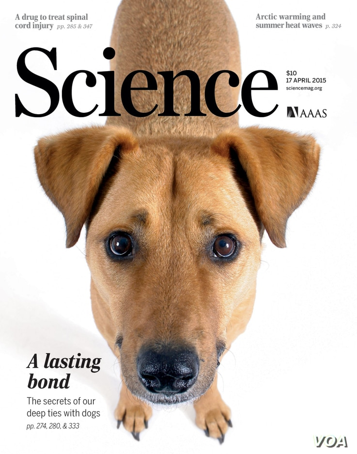 Cover photo, Science