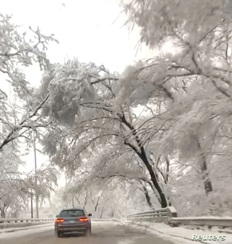 Trees covered in snow are seen as a car drives in Kansas City, Mo., Jan. 12, 2019, in this still image obtained from social media video.
