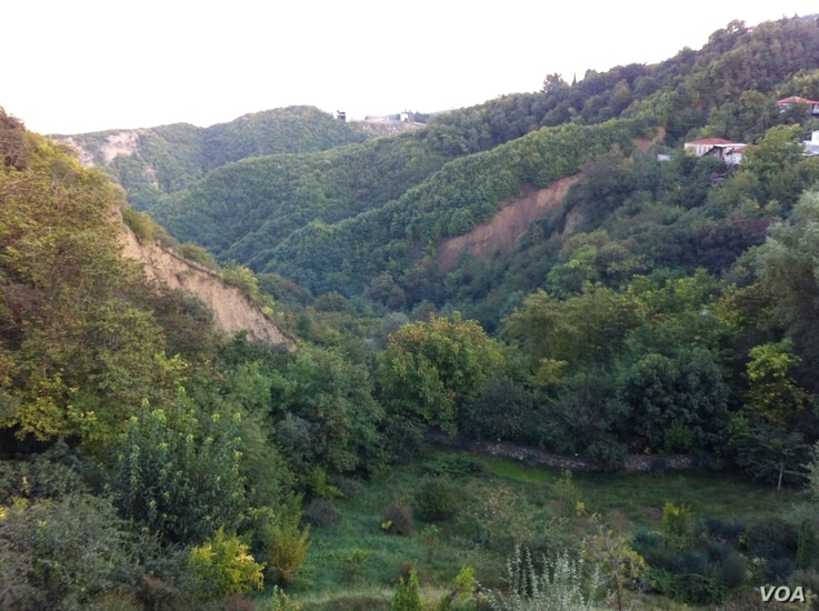 In hills and valleys like these, near Sighnaghi, archeologists have found evidence of grape cultivation and wine fermentation dating back to 7,000 BC, making eastern Georgia the site of the earliest known evidence of wine production, Georgia, October...