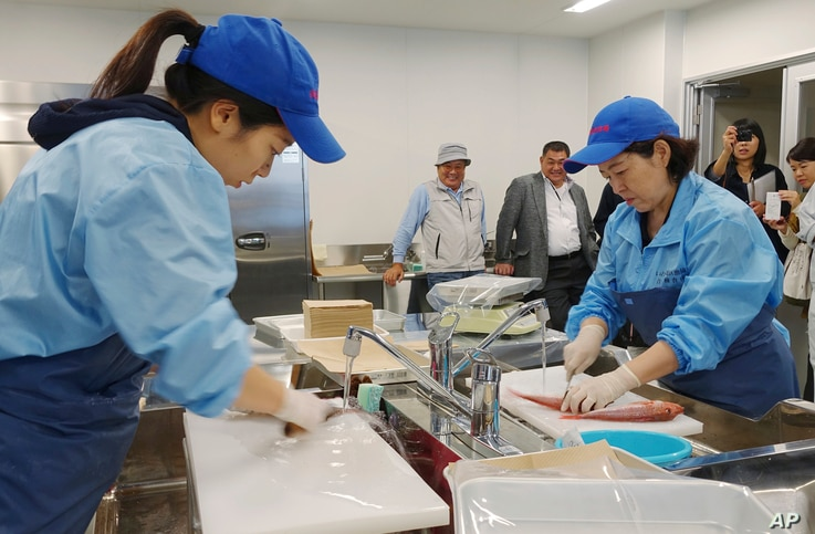 Lab technicians at the Fukushima Prefectural Fisheries Experimental Station at Onahama Port in Iwaki city prepare fish to measure cesium levels for safety tests under the prefecture's experimental fishing program, Oct. 12, 2017.