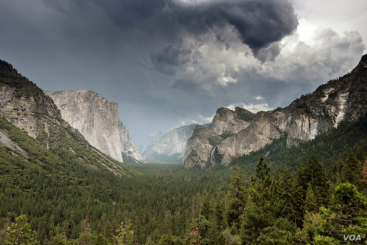 Yosemite National Park in California is famed for its iconic vista of towering Bridalveil Fall and the granite cliffs of El Capitan and Half Dome.
