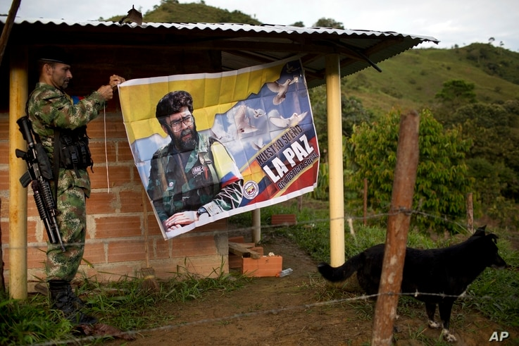 """FILE - Orlando, a rebel fighter for the 36th Front of the Revolutionary Armed Forces of Colombia, or FARC, hangs a banner featuring the late rebel leader Alfonso Cano with a message that reads in Spanish: """"Our dream is peace with social justice,"""" in ..."""