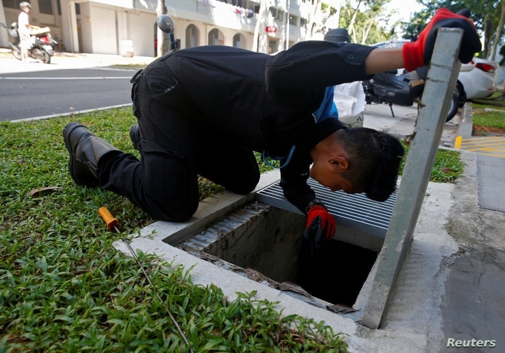 A member of a pest control team inspects drains at a Zika cluster in Singapore, Sept. 2, 2016.