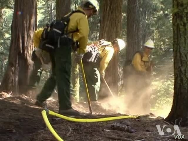 Firefighters Expect Rim Fire Contained Friday
