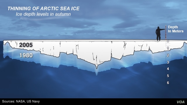 Thinning of Arctic sea ice, 1980 - 2005
