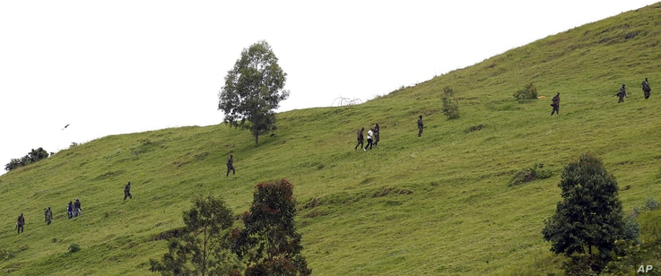 M23 rebel fighters are seen walking up a hill overlooking Goma, six kilometers from the center of the eastern Congo city, December 3, 2012.