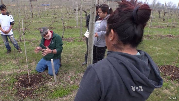 Virginia winery owner Doug Fabbioli teaches students how to farm at his free school.