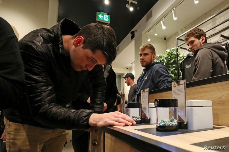 A customer looks at cannabis on display after legal recreational marijuana went on sale at a Tweed retail store in St John's, Newfoundland and Labrador, Canada, Oct. 17, 2018.