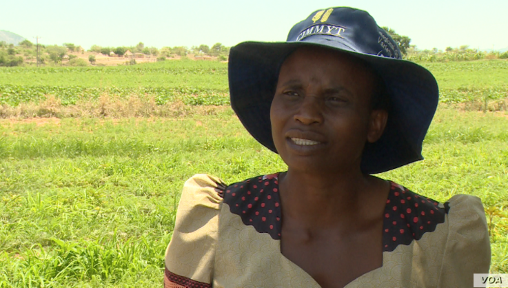 Winnet Kapondoro says irrigation project funded by IFAD has improved her life.