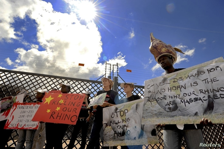 Activists protest Rhinoceros poaching outside the Chinese embassy in Pretoria, South Africa, March 29, 2012.