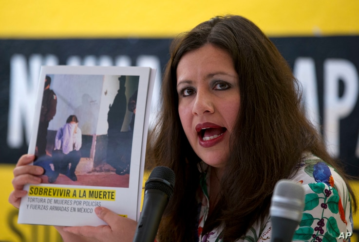 Erika Guevara-Rosas, Americas Director for Amnesty International, speaks during a press conference in Mexico City, June 28, 2016.