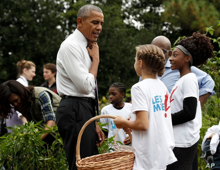 President Barack Obama loosens his tie as he visits the first lady Michelle Obama's White House Kitchen Garden harvest on the South Lawn White House in Washington, October 6, 2016.