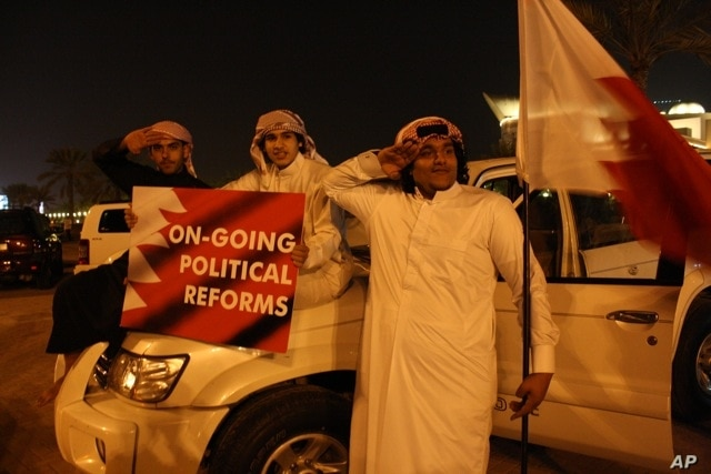 Young boys show their support for the Bahraini government, February 21, 2011