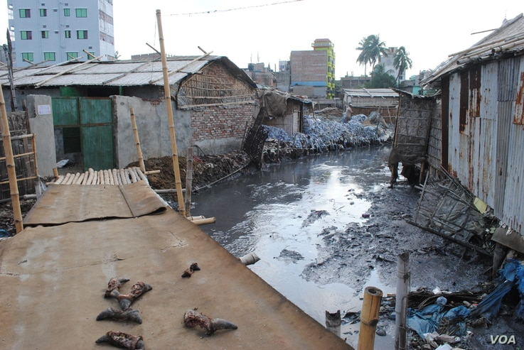 Hazaribagh is home to Dhaka's tanneries and is infamous as an environmental disaster. (A. Yee/VOA)