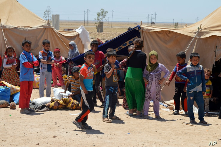 Internally displaced civilians from Fallujah flee their homes during fighting between Iraqi security forces and Islamic State group during a military operation to regain control of the city, outside Fallujah, 40 miles (65 kilometers) west of Baghdad,...