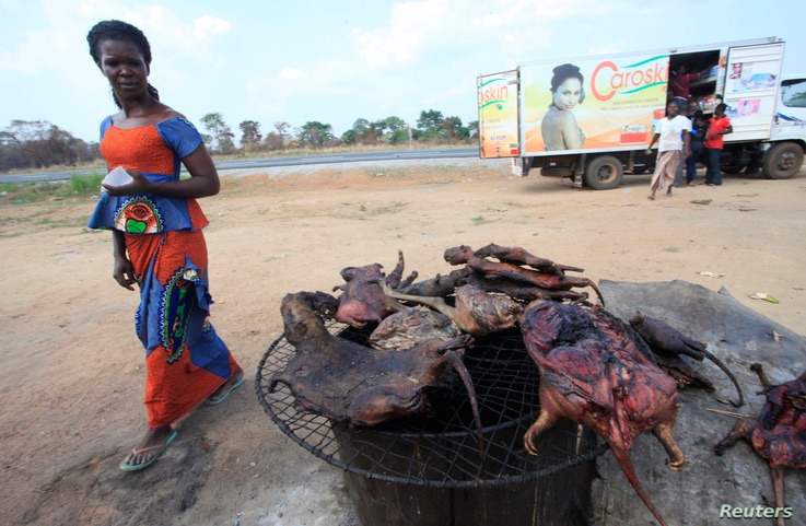 A woman walks past dried bushmeat near a road of the Yamoussoukro highway March 29, 2014.  REUTERS/Thierry Gouegnon