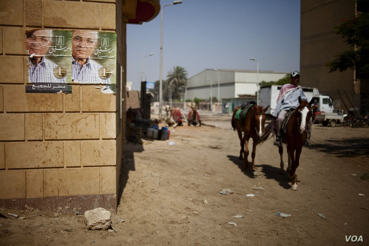 Many horse and camel riders at the Great Pyramids backed presidential candidate Ahmed Shafiq as good for business, Giza, Egypt, June 17, 2012.  (Y. Weeks/VOA)