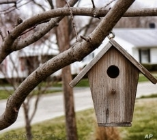 Looks like a birdhouse. But the yappy neighborhood dog is eying it suspiciously.