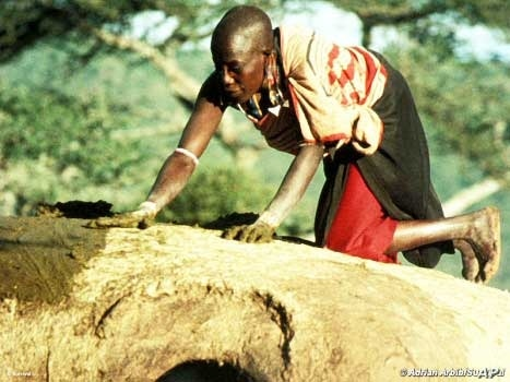 Human rights activists say the Maasai are being pushed off their land by various groups, including the Tanzanian government