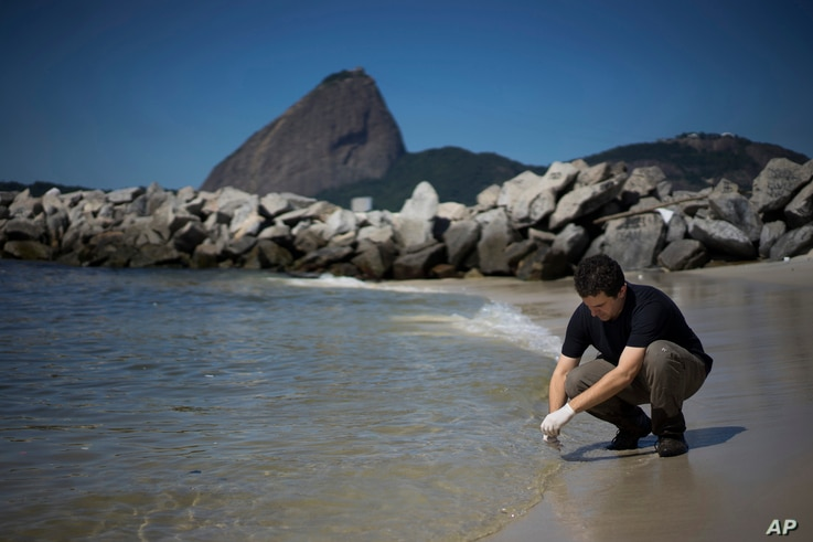 FILE - Fernando Spilki, virologist and coordinator of the environmental quality program at Feevale University, takes samples of water at the Marina da Gloria, in Rio de Janeiro, April 28, 2015.