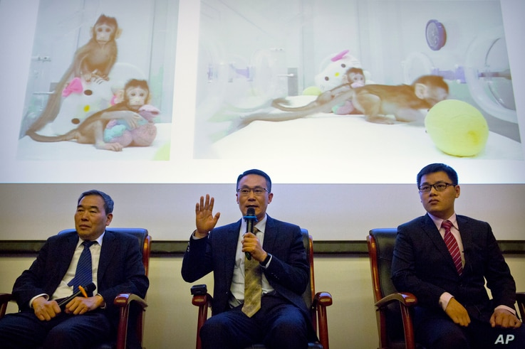 Sun Qiang, center, the director of the Nonhuman Primate Facility of the Institute of Neurosciences at the Chinese Academy of Sciences, speaks as Muming Poo, left, director of the Institute of Neurosciences, and Liu Zhen, right, a postdoctoral researc...