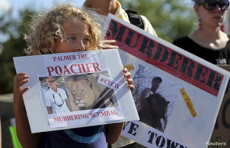 Protesters hold signs during a rally outside the River Bluff Dental clinic against the killing of a famous lion in Zimbabwe, in Bloomington, Minnesota, July 29, 2015.