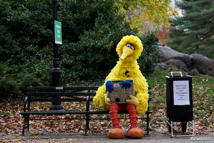 A man dressed as the Sesame Street character Big Bird sits on a bench waiting to take pictures with people walking through Central Park  in New York U.S., Nov. 14, 2016.