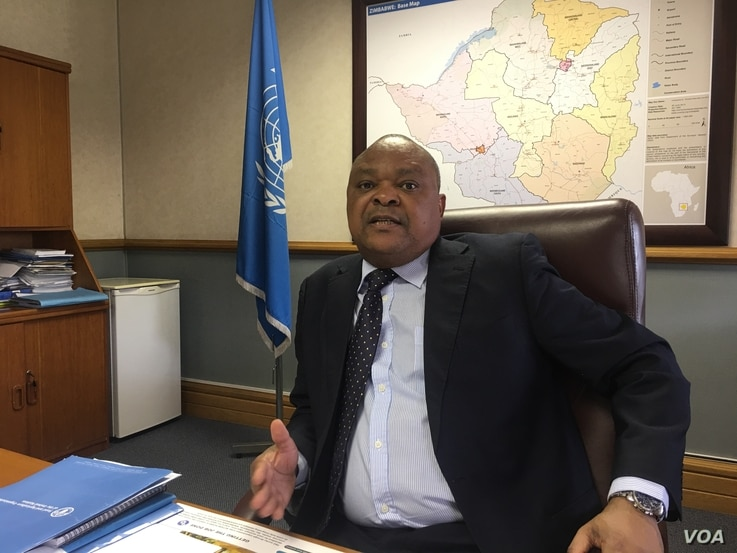 Chimimba David Phiri, the head of FAO in southern Africa head says his UN agency will carry on with its $13 million irrigation rehabilitation project to ensure Zimbabwe improves its livestock and crop production,  March, 2017. (C. Mavhunga/VOA)