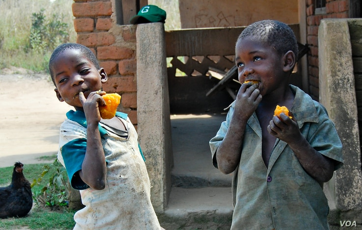 FILE - Children are seen enjoying orange sweet potatoes. (Courtesy - HarvestPlus)
