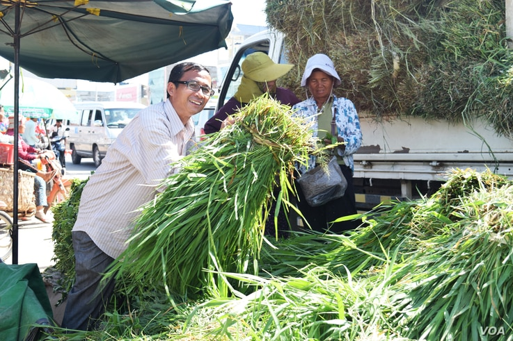 Yaing Saing Koma, co-founder of Grassroots Democratic Party GDP, at Ang Tasom market at Takeo province, August 9, 2016. (S. Khan for VOA)