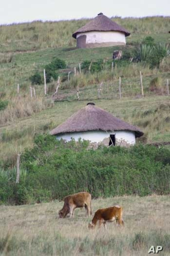 The doctor grew up very poor, in a mud hut similar to these in South Africa's Eastern Cape province