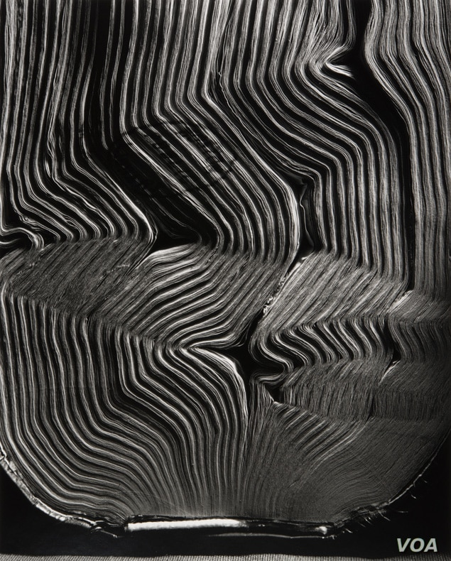 Abelardo Morell, Book with Wavy Pages, 2001