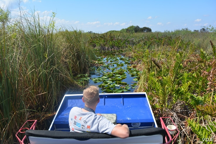 The easiest way to get around the Everglades is by airboat.