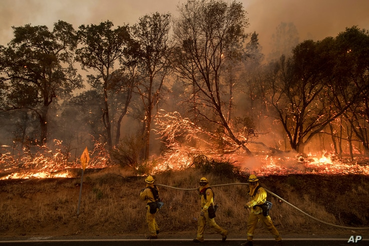 FILE - Firefighters battle a wildfire as it threatens to jump a street near Oroville, Calif., July 8, 2017.