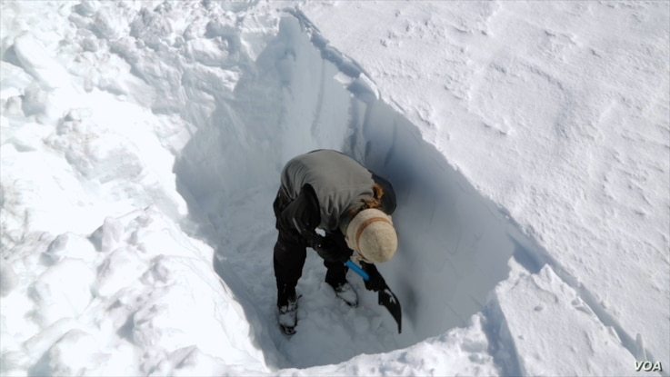 To measure snowpacks, researchers dig snowpits down to bare ground.